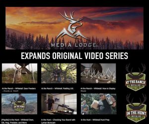 media lodge expands original video series